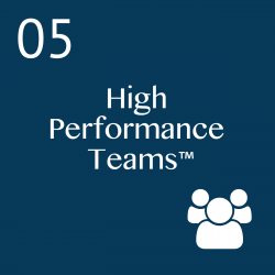 We build your High performance teams with: 1 Day Executive Team Workshop; 1 Day Team Leadership Workshop; 1 Day Team Member Program; Team tools; Team Coaching