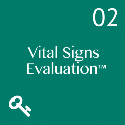 TheVS Evaluation compares best practices with your current state in all or part of Leadership and Management, Business Environment, Customer, Direction, Strategy, Operations, Sales, Marketing, Finance, Process, Structure, Roles, Teams, Human Resources and People, and Recommendations.